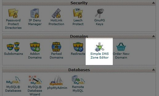 cpanel-simple-dns-editor