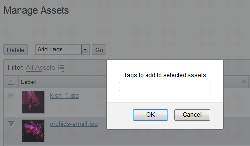Add tag dialog window