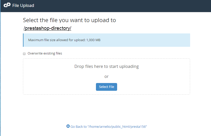 tTheme files cPanel File Manager