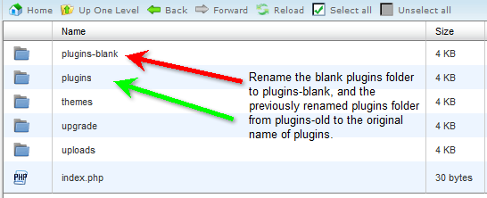 Rename the blank plugins folder to plugins-blank and original plugins folder back to plugins