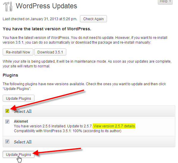 wordpress admin updates click select all plugins then update