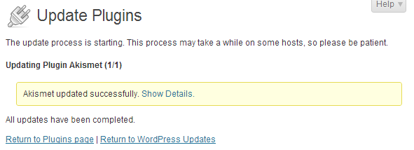 wordpress admin updates plugin update successful