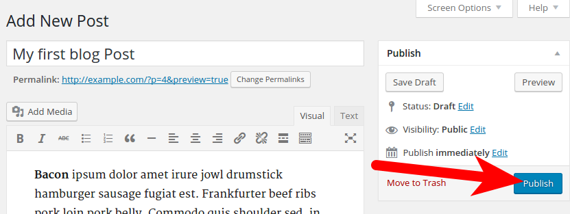 Publishing Post in WordPress